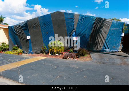 Tented house ready to be fumigated - Stock Image & Tenting Stock Photos u0026 Tenting Stock Images - Alamy