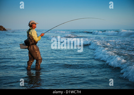 Stripping stock photos stripping stock images alamy for Surf fly fishing