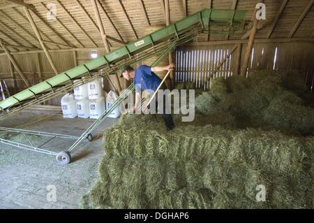 Hay Bales And Barn Stock Photos & Hay Bales And Barn Stock ...