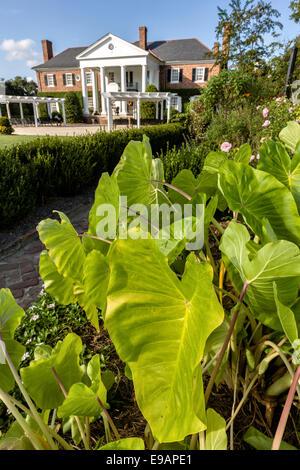 Vertical Formal Garden Stock Photos Vertical Formal