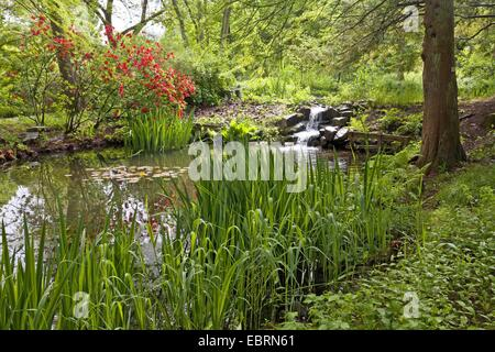 Terrific Brook Stock Photos  Brook Stock Images  Alamy With Handsome Pond And Brook In The Botanical Gardens Germany North Rhinewestphalia  Ruhr With Lovely Shopping In Covent Garden Also Covent Garden Pizza Express In Addition Large Garden Plant Pots And Sway Covent Garden As Well As Gardens Haywards Heath Additionally Role Play Garden Centre From Alamycom With   Handsome Brook Stock Photos  Brook Stock Images  Alamy With Lovely Pond And Brook In The Botanical Gardens Germany North Rhinewestphalia  Ruhr And Terrific Shopping In Covent Garden Also Covent Garden Pizza Express In Addition Large Garden Plant Pots From Alamycom