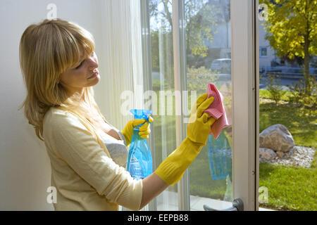 Handschuh zum fensterputzen