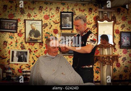 poodle haircuts styles coiffeur stock photos amp coiffeur stock images alamy 2424