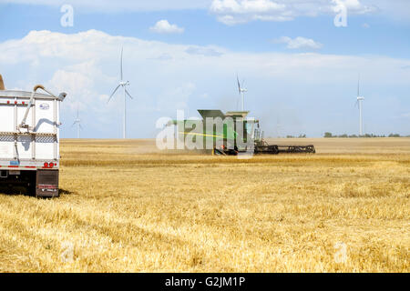 reaping stock photos & reaping stock images alamy