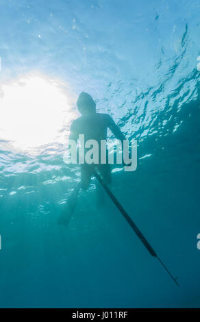 ascension island spearfishing spearfishing stock photos spearfishing stock images alamy